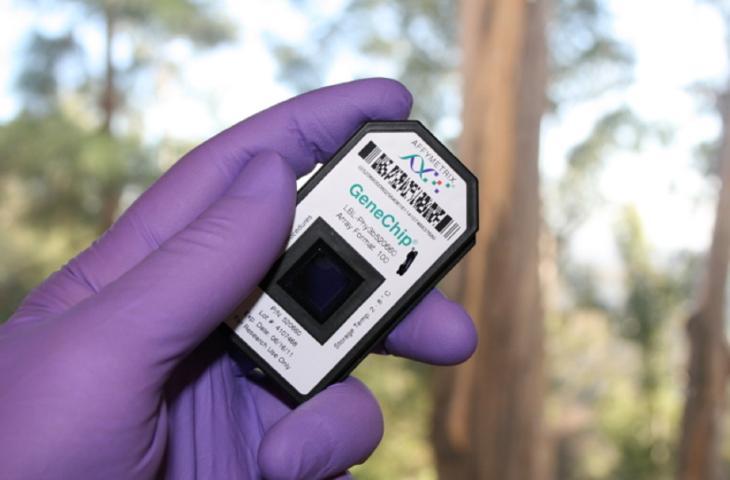 Rilevare l'inquinamento dell'acqua con un chip alt_tag