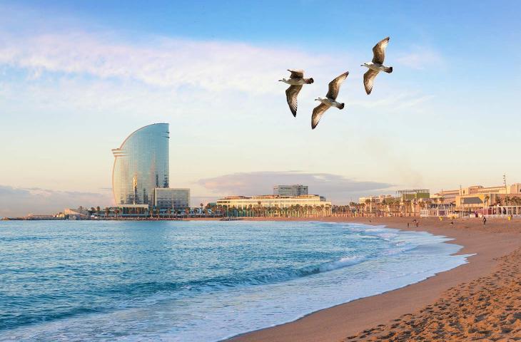 Città fantasma galleggiante al largo di Barcellona fiction o realtà - In a Bottle