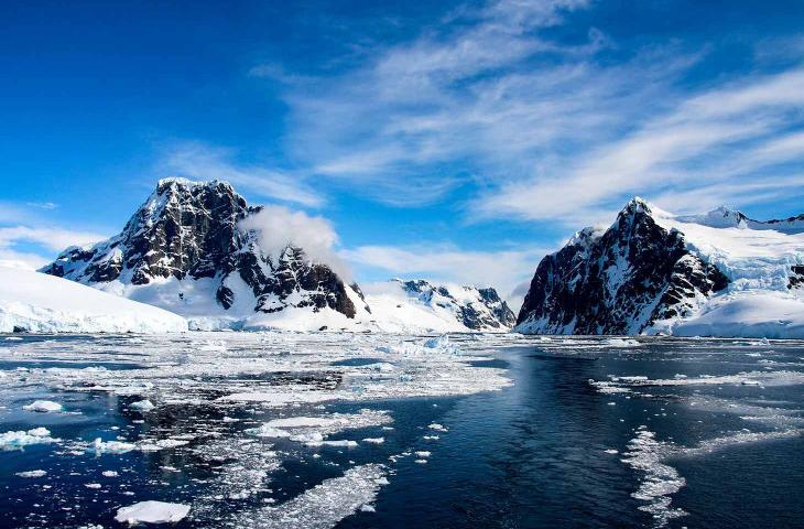 Antartide, scoperti resti fossili di una foresta pluviale - In a Bottle