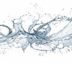 L'acqua la insegna la sete: la poesia di Emily Dickinson  - In a Bottle