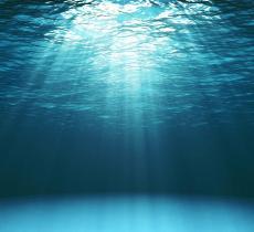 """Le acque degli oceani sono sempre più calde: raggiunte temperature """"record"""" - In a Bottle"""