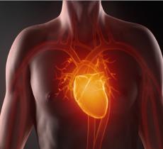 La disidratazione aumenta il rischio delle malattie cardiovascolari alt_tag
