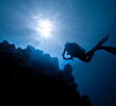 """Creato un """"polmone artificiale"""" per respirare a lungo sott'acqua - In a Bottle"""
