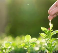 Gestione idrica migliore per aumentare la produzione agricola