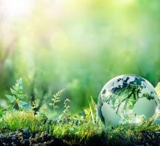 Giornata mondiale dell'Ambiente, l'impegno per abbattere l'inquinamento atmosferico