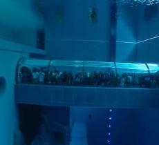 La piscina più profonda del mondo? Si trova in Italia_alt tag