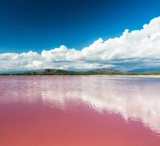 Un lago di colore rosa? Esiste e si trova in Africa - In a Bottle