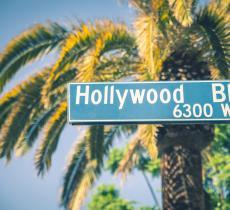 Le star di Hollywood e la lotto contro la crisi idrica