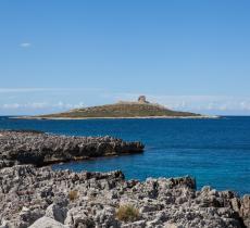 L'Isola delle Femmine è in vendita? Ecco l'idea di quattro artiste, che la vogliono acquistare - In a Bottle