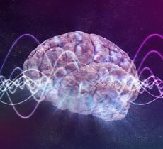 Lotta all'obesità con le cellule del cervello che indicano la fame