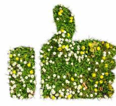 Più agricoltura sostenibile contro i cambiamenti climatici
