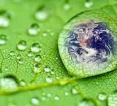 Produzione di Acqua Efficiente e Sostenibile Grazie a Nestlé e Aquassys – In a Bottle
