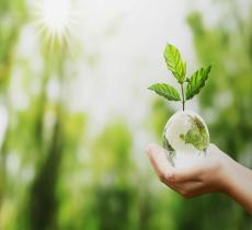 "Detersivi ecologici, ma anche cosmetici naturali: la svolta ""green"" di Teanatura - In a Bottle"