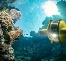 Un robot rileva alte temperature al di sotto di un ghiacciaio nell'Antartide - In a Bottle