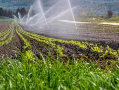 H2Agro, limita lo spreco d'acqua nelle coltivazioni