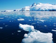 Il riscaldamento globale raggiunge l'Antartico – In a Bottle