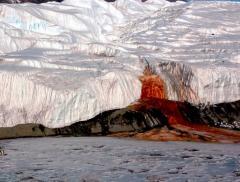 Antartide: svelato il mistero del ghiacciaio Taylor