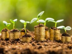 Aumenta il consumo di suolo in Europa