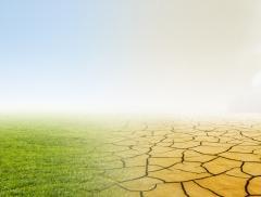 Il Cambio del Clima in Italia tra Piogge e Aumento di Temperatura – In a Bottle
