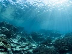 Banche Emettono Bond per Salvaguardia Acqua Dolce e Salata – In a Bottle