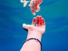 DoDo for Tenaka, per salvare la barriera corallina - In a Bottle