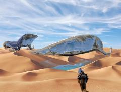 Energia solare per raccogliere acqua nel deserto
