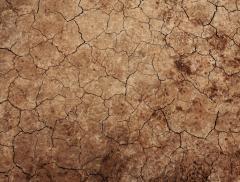 Eventi atmosferici estremi e cambiamenti climatici: come valutarli – In a Bottle