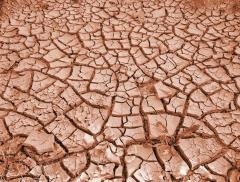 """""""El Niño"""" mette a dura prova l'agricoltura dell'Australia"""