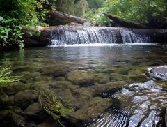 Gestione Intelligente dell'Acqua contro Siccità e Cambiamenti Climatici – In a Bottle