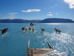 Groenlandia, l'effetto ottico della slitta trainata sull'acqua - In a Bottle