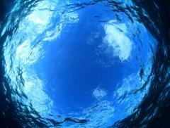 Sarà possibile abitare i pianeti ricoperti d'acqua? - In a Bottle