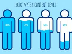 Il corpo umano potrebbe essere fatto d'acqua per il 99%