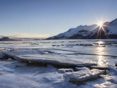 In crociera tra i ghiacciai dall'Alaska a New York