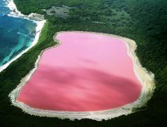 Lake Hillere, il fiabesco lago rosa australiano alt_tag
