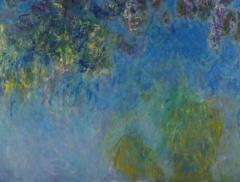 Nuove ninfee di Monet scoperte all'Aia – In a Bottle