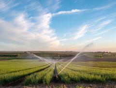 Irrigazione Scientifica Ottimizzata e Consapevole – In a Bottle