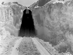 Ghiacciai Groenlandia: riemerge ex base militare
