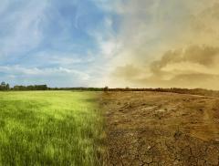 Tempeste e siccità: potrebbero dipendere dal riscaldamento globale