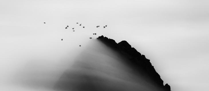 Artico, ultima frontiera: 120 scatti in mostra a Venezia