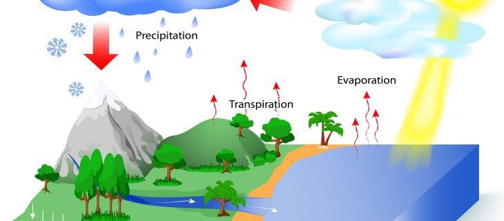 Come funziona il ciclo idrologico per la rigenerazione dell'acqua
