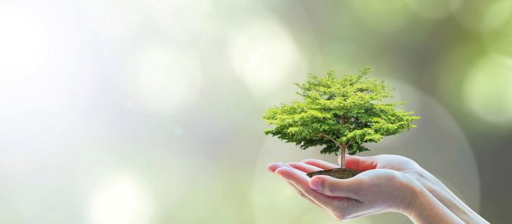 Dai rifiuti organici alla bioplastica grazie a Synpol
