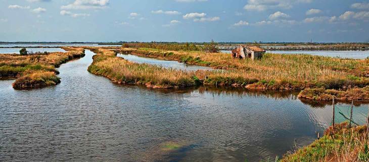 Delta del Po, nuovo tipo di vigilanza ambientale con l'utilizzo di droni - In a Bottle