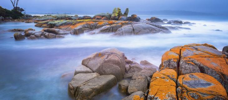 Eco-turismo: il caso esemplare della Tasmania