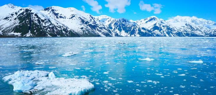 Cambiamenti Climatici e Scioglimento dei Ghiacciai – In a Bottle