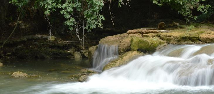 Secondo uno studio dell'Università del Delaware, per proteggere l'acqua molti americani spenderebbero volentieri i loro soldi per infrastrutture green