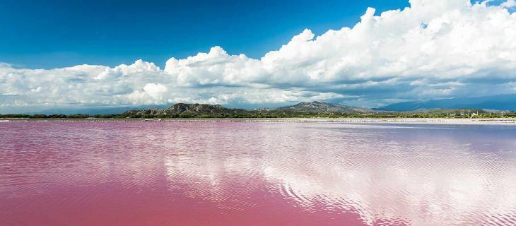 Un lago di colore rosa? Esiste e si trova in Africa - In a Bottle