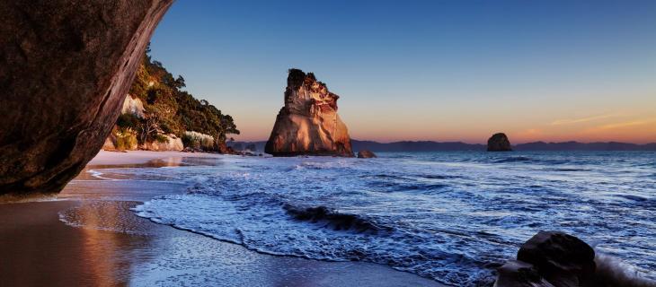 Nuova Zelanda, lì dove l'acqua diventa blu fosforescente - In a Bottle